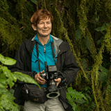 Ulrike Fischer, Participant