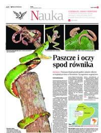 RZECZPOSPOLITA (Poland)