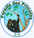 Paradis Des Primates